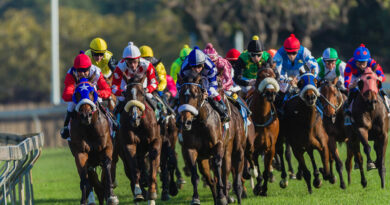 Three Horses Worth Each-Way Consideration For The Grand National
